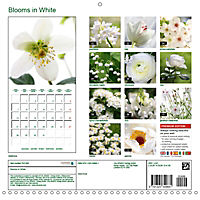 Blooms in White (Wall Calendar 2019 300 × 300 mm Square) - Produktdetailbild 13