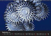 Blue Moments (Wall Calendar 2019 DIN A3 Landscape) - Produktdetailbild 9