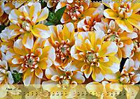 Blüten dicht an dicht (Wandkalender 2019 DIN A3 quer) - Produktdetailbild 3