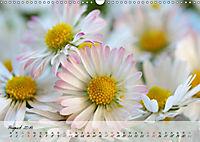 Blüten dicht an dicht (Wandkalender 2019 DIN A3 quer) - Produktdetailbild 8