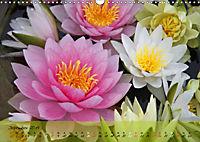 Blüten dicht an dicht (Wandkalender 2019 DIN A3 quer) - Produktdetailbild 12