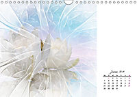 Blüten im Fraktal (Wandkalender 2019 DIN A4 quer) - Produktdetailbild 1