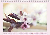 Blüten - Zauber aus dem Garten (Tischkalender 2019 DIN A5 quer) - Produktdetailbild 1