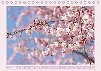Blüten - Zauber aus dem Garten (Tischkalender 2019 DIN A5 quer) - Produktdetailbild 5