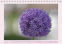 Blüten - Zauber aus dem Garten (Tischkalender 2019 DIN A5 quer) - Produktdetailbild 10