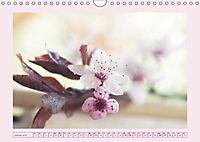 Blüten - Zauber aus dem Garten (Wandkalender 2019 DIN A4 quer) - Produktdetailbild 1