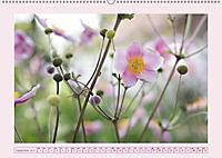 Blüten - Zauber aus dem Garten (Wandkalender 2019 DIN A2 quer) - Produktdetailbild 9