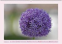Blüten - Zauber aus dem Garten (Wandkalender 2019 DIN A2 quer) - Produktdetailbild 10