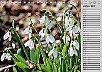 Blütenschau 2019 (Tischkalender 2019 DIN A5 quer) - Produktdetailbild 4