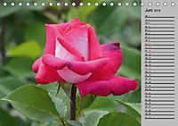 Blütenschau 2019 (Tischkalender 2019 DIN A5 quer) - Produktdetailbild 6