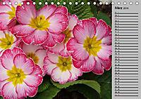 Blütenschau 2019 (Tischkalender 2019 DIN A5 quer) - Produktdetailbild 3