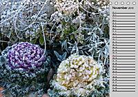 Blütenschau 2019 (Tischkalender 2019 DIN A5 quer) - Produktdetailbild 11