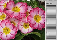 Blütenschau 2019 (Wandkalender 2019 DIN A3 quer) - Produktdetailbild 3