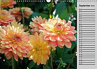 Blütenschau 2019 (Wandkalender 2019 DIN A3 quer) - Produktdetailbild 9
