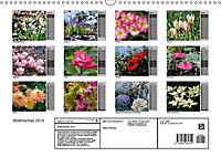 Blütenschau 2019 (Wandkalender 2019 DIN A3 quer) - Produktdetailbild 13