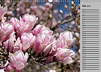 Blütenschau 2019 (Wandkalender 2019 DIN A3 quer) - Produktdetailbild 5