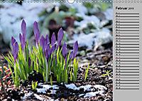 Blütenschau 2019 (Wandkalender 2019 DIN A3 quer) - Produktdetailbild 2