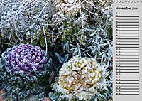Blütenschau 2019 (Wandkalender 2019 DIN A3 quer) - Produktdetailbild 11