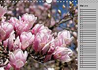Blütenschau 2019 (Wandkalender 2019 DIN A4 quer) - Produktdetailbild 5