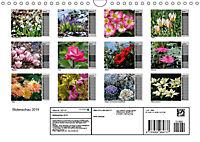 Blütenschau 2019 (Wandkalender 2019 DIN A4 quer) - Produktdetailbild 13