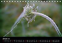 Blütenzauber - Blumen und Blüten zu jeder Jahreszeit (Tischkalender 2019 DIN A5 quer) - Produktdetailbild 1
