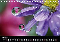 Blütenzauber - Blumen und Blüten zu jeder Jahreszeit (Tischkalender 2019 DIN A5 quer) - Produktdetailbild 3