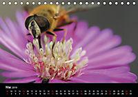 Blütenzauber - Blumen und Blüten zu jeder Jahreszeit (Tischkalender 2019 DIN A5 quer) - Produktdetailbild 5