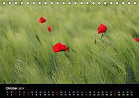 Blütenzauber - Blumen und Blüten zu jeder Jahreszeit (Tischkalender 2019 DIN A5 quer) - Produktdetailbild 10