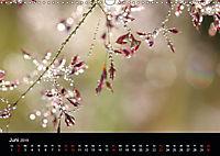 Blütenzauber - Blumen und Blüten zu jeder Jahreszeit (Wandkalender 2019 DIN A3 quer) - Produktdetailbild 6