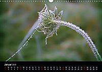 Blütenzauber - Blumen und Blüten zu jeder Jahreszeit (Wandkalender 2019 DIN A3 quer) - Produktdetailbild 1