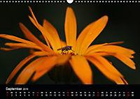 Blütenzauber - Blumen und Blüten zu jeder Jahreszeit (Wandkalender 2019 DIN A3 quer) - Produktdetailbild 9