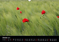 Blütenzauber - Blumen und Blüten zu jeder Jahreszeit (Wandkalender 2019 DIN A3 quer) - Produktdetailbild 10