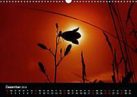 Blütenzauber - Blumen und Blüten zu jeder Jahreszeit (Wandkalender 2019 DIN A3 quer) - Produktdetailbild 12