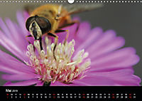 Blütenzauber - Blumen und Blüten zu jeder Jahreszeit (Wandkalender 2019 DIN A3 quer) - Produktdetailbild 5