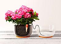 Blumat Wasserspender - Produktdetailbild 1