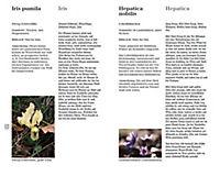 Blumen einst und jetzt - Produktdetailbild 3