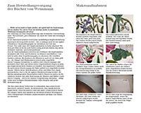 Blumen einst und jetzt - Produktdetailbild 4