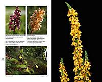 Blumen einst und jetzt - Produktdetailbild 5