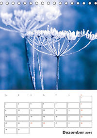 Blumige Fotomalerei (Tischkalender 2019 DIN A5 hoch) - Produktdetailbild 12