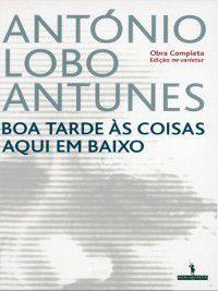 Boa Tarde às Coisas Aqui em Baixo, António Lobo Antunes
