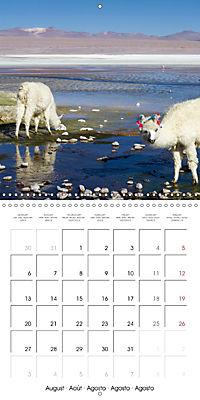 Bolivia (Wall Calendar 2018 300 × 300 mm Square) - Produktdetailbild 8