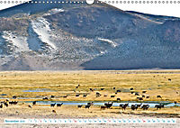 Bolivien - Land und Leute (Wandkalender 2019 DIN A3 quer) - Produktdetailbild 11