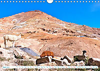 Bolivien - Land und Leute (Wandkalender 2019 DIN A4 quer) - Produktdetailbild 4