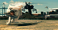 Bolt - Ein Hund für alle Fälle - Produktdetailbild 8