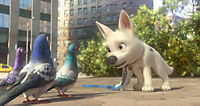 Bolt - Ein Hund für alle Fälle - Produktdetailbild 6
