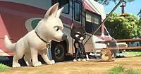Bolt - Ein Hund für alle Fälle - Produktdetailbild 3