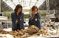 Bones - Die Knochenjägerin - Season 1 - Produktdetailbild 8