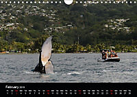 Bora Bora, Paradise islands (Wall Calendar 2019 DIN A4 Landscape) - Produktdetailbild 2