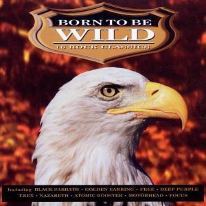 Born To Be Wild, Diverse Interpreten