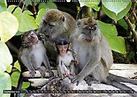 Borneo - Tierparadies Regenwald (Wandkalender 2019 DIN A2 quer) - Produktdetailbild 4